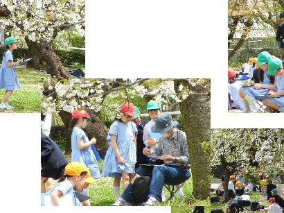 植物園の幼稚園児