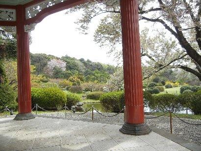 博物館1階から日本庭園を