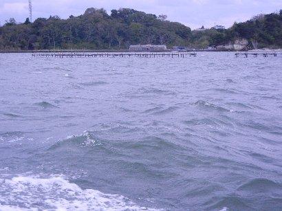 牡蠣の養殖筏