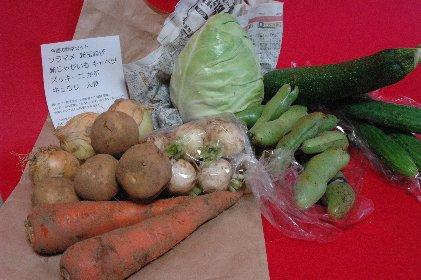 0609山田農場の野菜セット