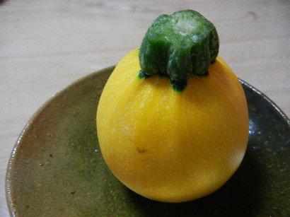 丸くて黄色い、ズッキーニ
