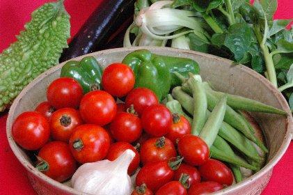 山田農場の野菜