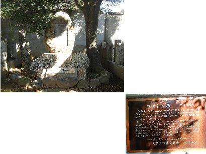 コンドルの墓
