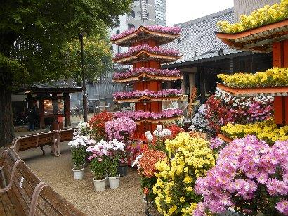 高岩寺の菊飾り