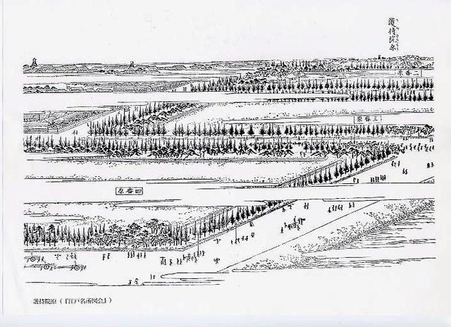 護持院旧地の図
