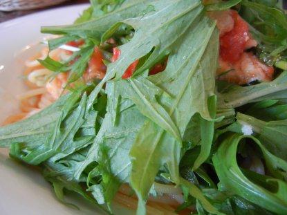 穴子と春アスパラのトマトソース スパゲッティ