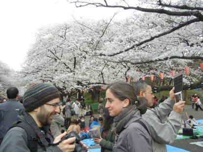 上野公園・桜並木