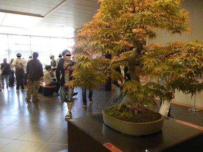 盆栽美術館玄関ホール
