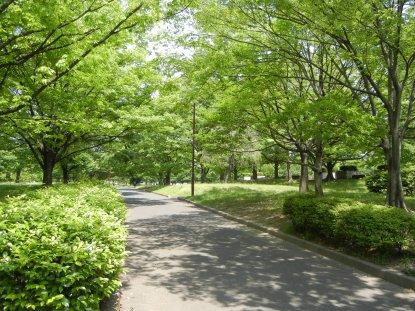 亀戸中央公園B地区