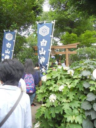白山神社内浅間神社
