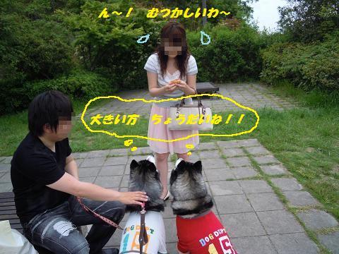 DSCN5013y_20110524231835.jpg