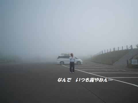DSCN7894y.jpg