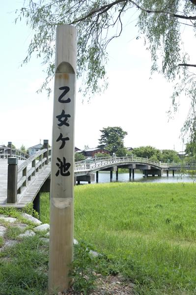 08・乙女ヶ池