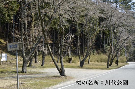 01・川代公園