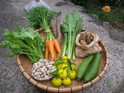 野菜セット_20111028