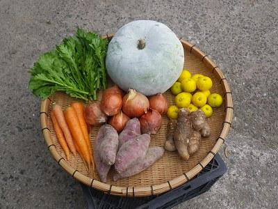 s-20121109_野菜セット