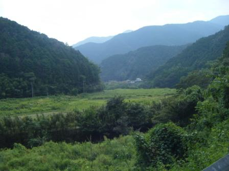 勝間川の放棄地(1)