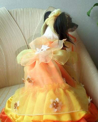 2010_0724etsu_dress0010.jpg