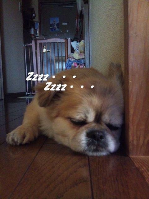 お疲れですね