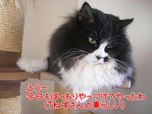 20112046.jpg
