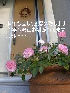 コピー ~ P1020323