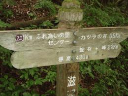 20100922-1054.jpg