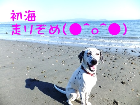 blog_0103_132025.jpg