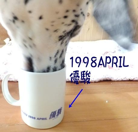 blog_0103_165219.jpg