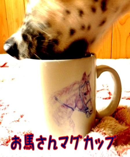 blog_0103_165508.jpg