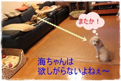 2013_0117_090424-IMG_8880.jpg