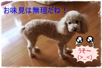 2013_0118_133812-IMG_8908.jpg