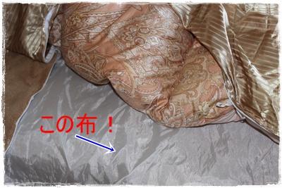 2013_0130_093751-IMG_9000.jpg