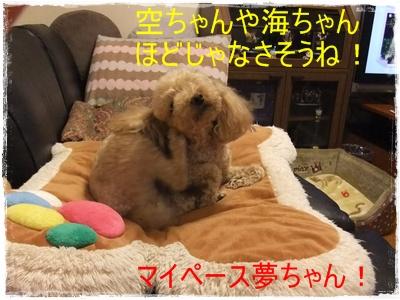 2013_0223_090807-DSCF7212.jpg