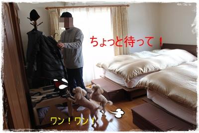 2013_0223_122212-IMG_9282.jpg