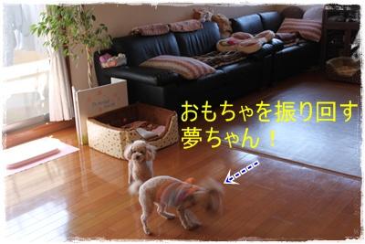 2013_0224_120617-IMG_9306.jpg