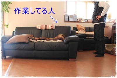 2013_0305_111638-IMG_9365.jpg