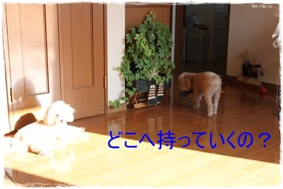2013_0321_085818-IMG_9527.jpg