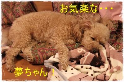 2013_0403_230842-IMG_9635.jpg
