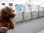 itakura1078_20100602142727.jpg