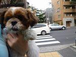 itakura1203_20100613154812.jpg