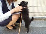 itakura1234_20100614230419.jpg