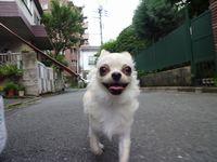 itakura1504.jpg
