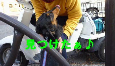 rafaeru11-16-9_20111122174110.jpg