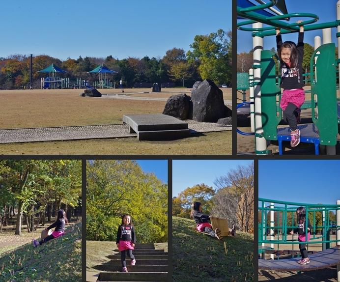 2013-11-22 2013-11-22 001 018-horz-vert