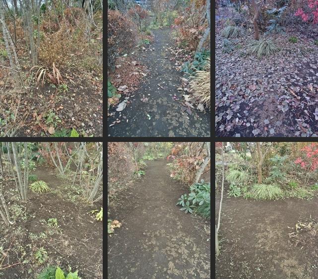 2013-11-28 2013-11-28 003 005-horz-vert