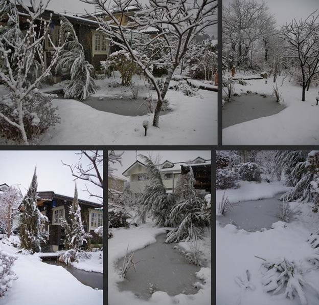 2013-01-14 2013-01-14 003 057-horz-vert