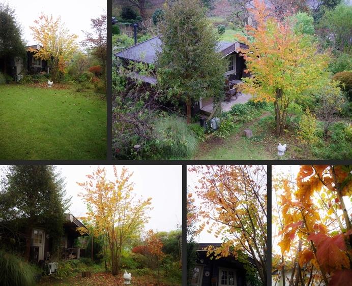 2013-11-07 2013-11-07 001 040-horz-vert