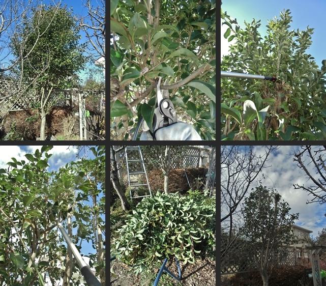 2013-12-21 2013-12-21 005 008-horz-vert