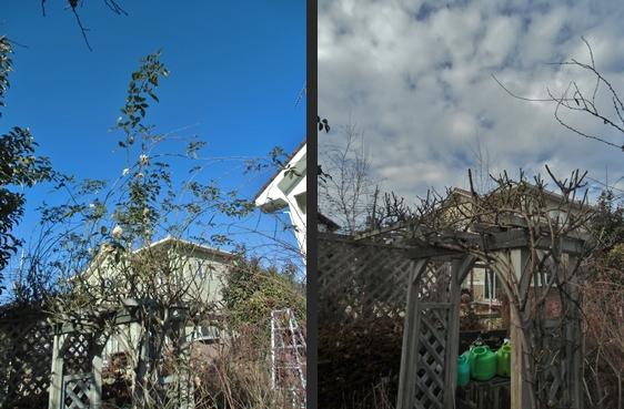 2013-12-21 2013-12-21 005 004-horz