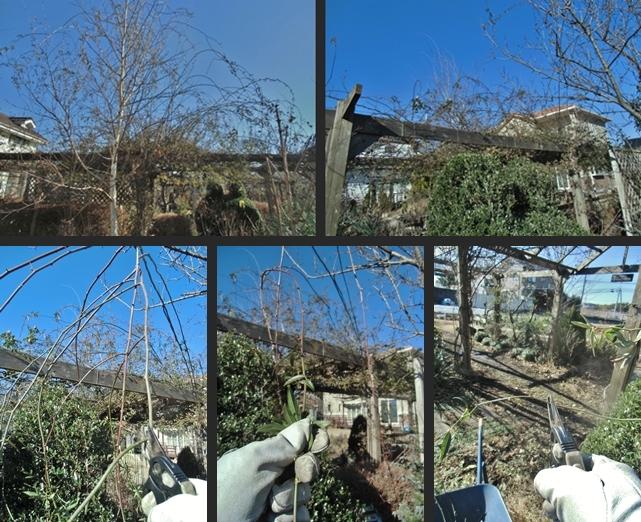 2013-12-25 2013-12-25 004 006-horz-vert